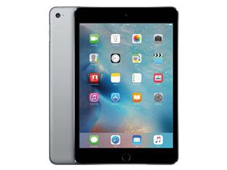 IPAD MINI 4 WI-FI 16GB MK6J2FD/A APPLE