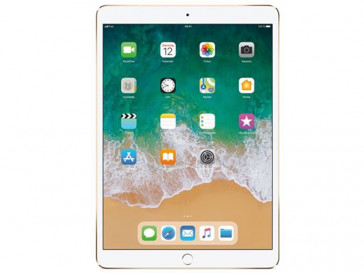 IPAD PRO WI-FI CELLULAR 256GB MPHJ2FD/A (GD) APPLE